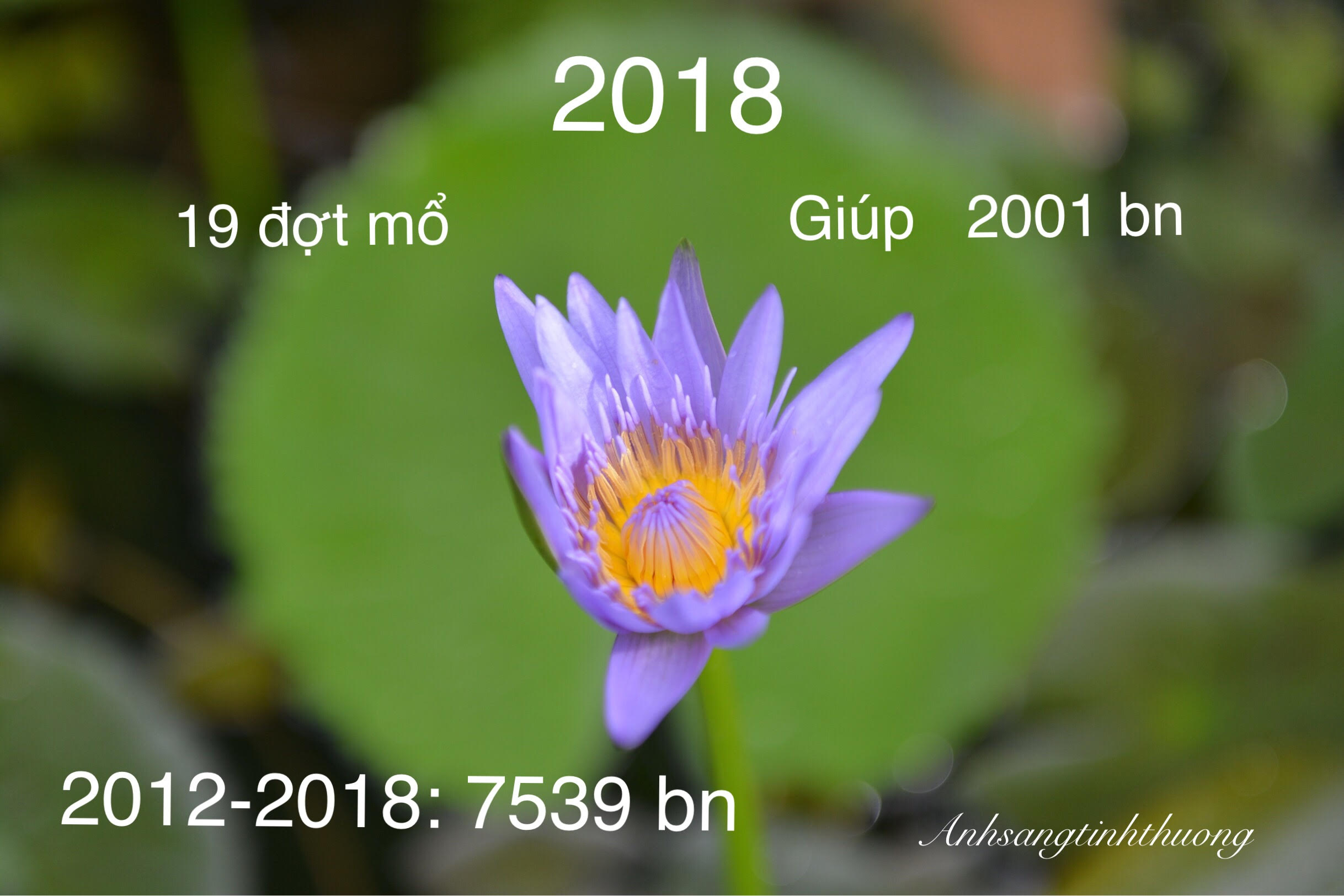 2019-thankyou